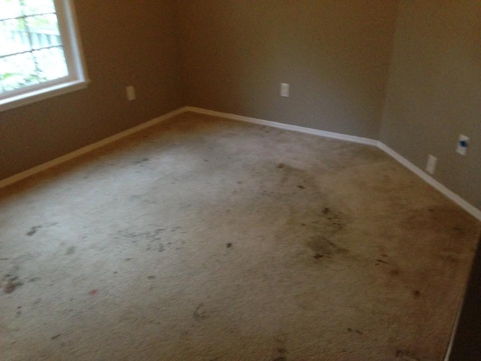 Stained and dirty carpet